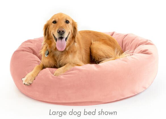 Memorypedic Dog Bed Blush