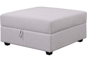 Charlotte Storage Ottoman by Scott Living