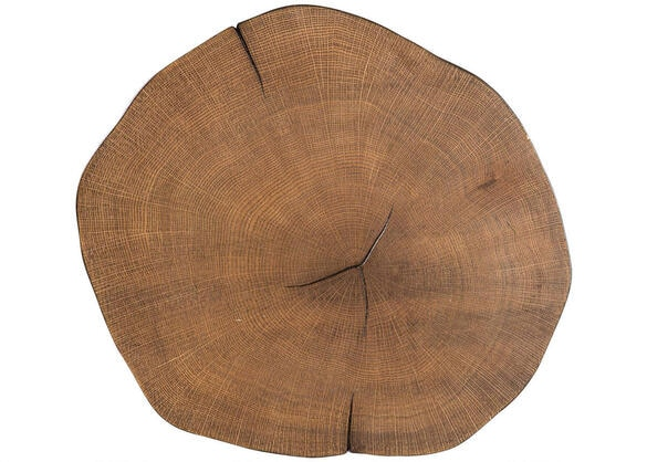 Rustic Brown Tree Trunk Accent Table by Scott Living